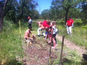 Plantation ICitrouille 21 mai 2016 (8)